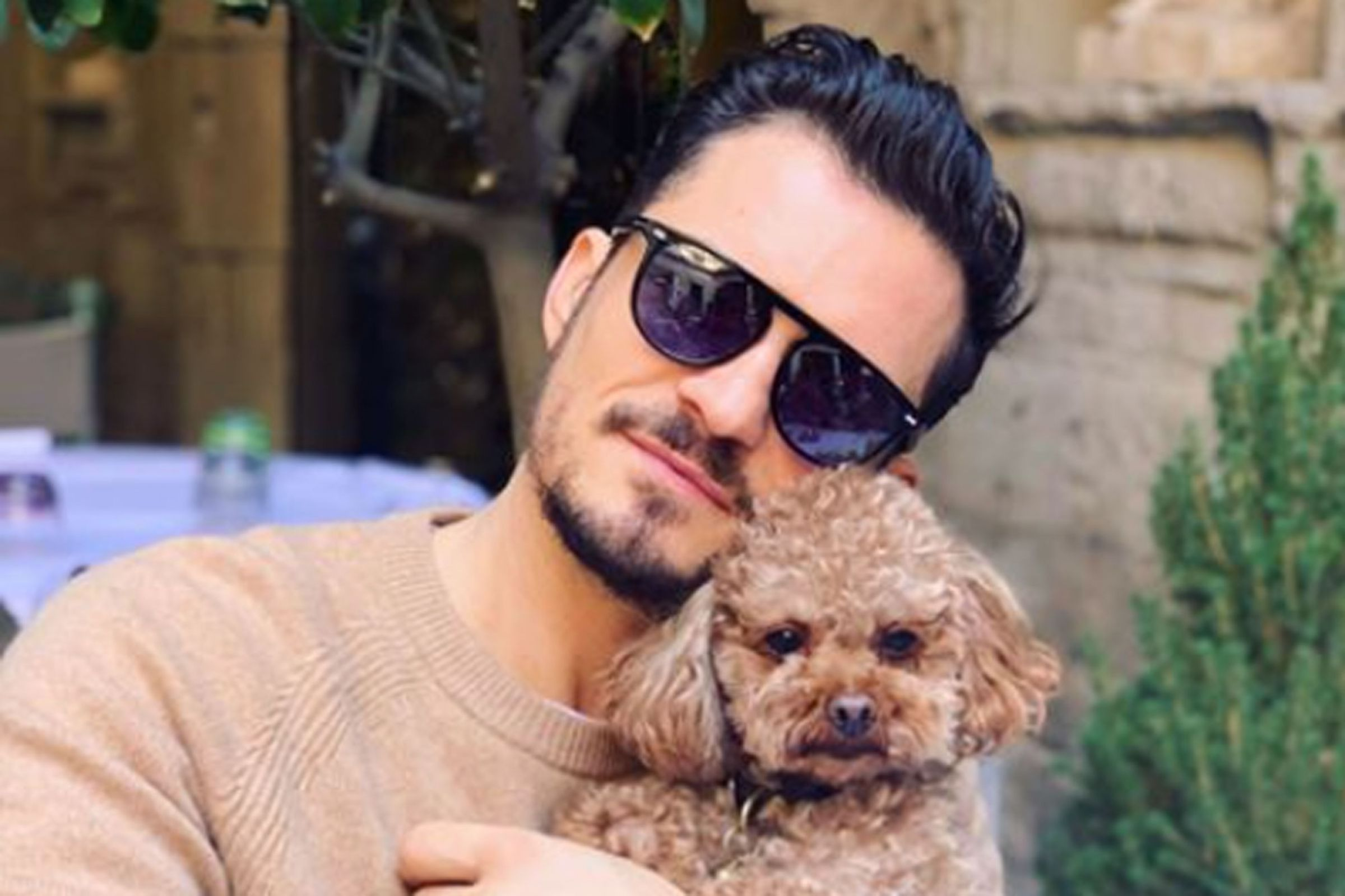 Katy Perry & Orlando Bloom's Dog, Mighty, Is Missing