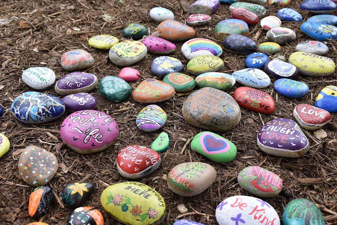 Maravilla senior living community residents decorate rocks for a tree planting ceremony as part of an April Earth Day celebration.