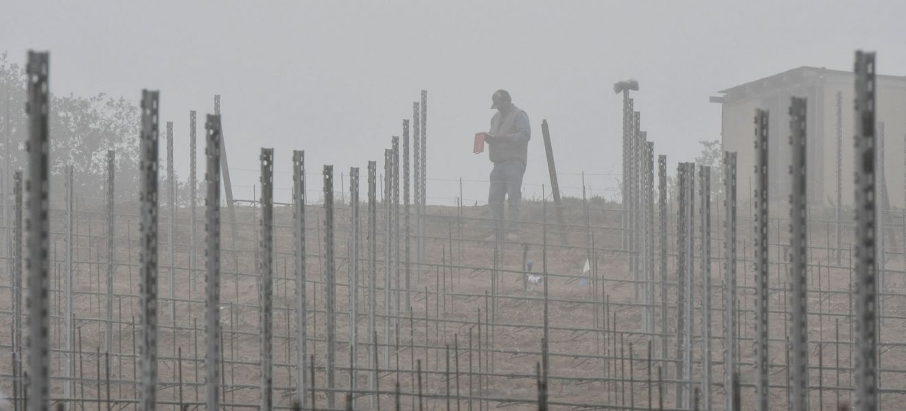 A misty morning for planting at Warner Henry Vineyard in the Santa Maria Valley.