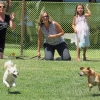 'Bark for Books' Benefits Los Alamos Library