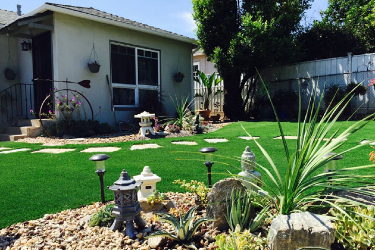 ecolawn sb fills void during drought with synthetic grass