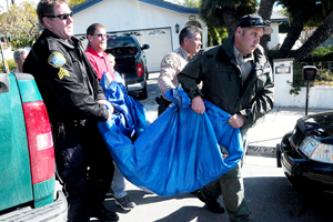 Wildlife officers carry a mountain lion to a waiting truck after it was tranquilized Monday after wandering into a Santa Barbara neighborhood. (Lara Cooper / Noozhawk photo)