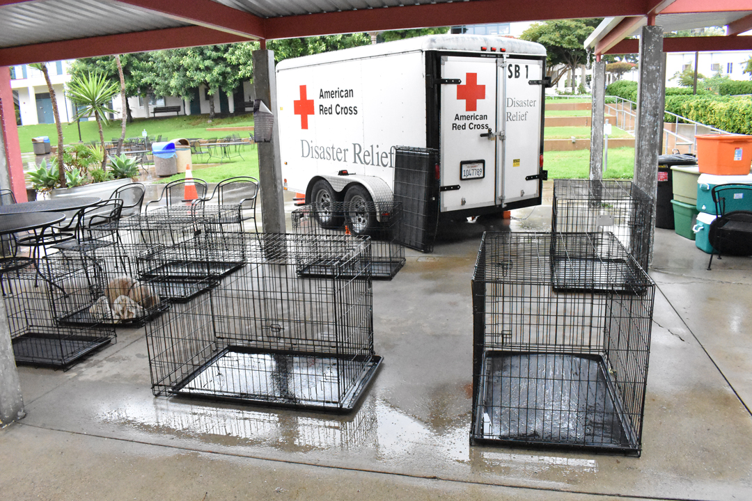The Red Cross-run evacuation shelter at Santa Barbara City College welcomes pets, organizers said.