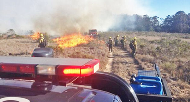 <p>A vegetation fire burned about 35 acres Friday afternoon at Vandenberg Air Force Base before being contained at about 5 p.m.</p>