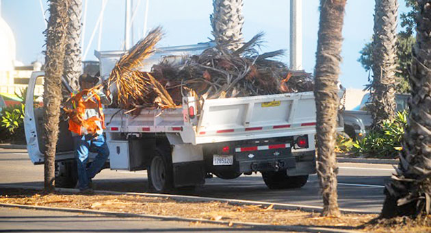 <p>City crews were kept busy in Santa Barbara on Friday, cleaning up fallen palm fronds and other debris set loose by gusty overnight winds. Forecasters were calling for a return of blustery conditions Saturday night into Sunday.</p>