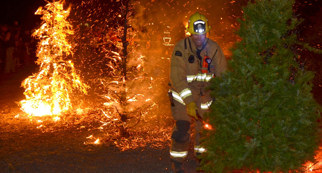 <p>A Santa Barbara County firefighter prepares to add a Christmas tree to the raging bonfire during the annual Christmas Tree Burn on Friday night at the Old Mission Santa Inés and coordinated by the Solvang Parks &amp; Recreation Department.</p>