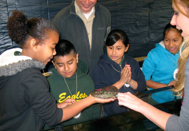 Fifth-graders from Franklin School examine an abalone from a touch tank at UC Santa Barbara's Research Experience and Education Facility. (George Foulsham / UCSB photo)