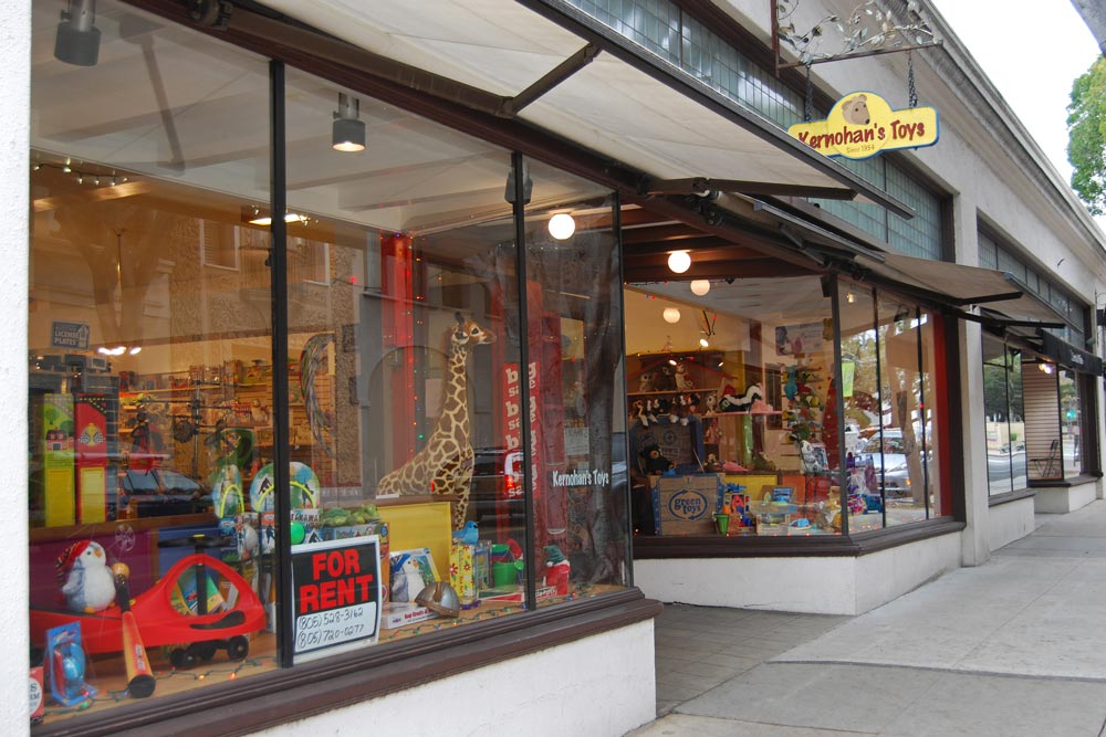 The best toy selection in SB. I appreciate a local's toy store that offers quality toys that are comprised of classics, newer toys, and