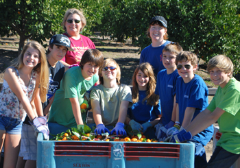Santa Barbara Middle School students and staff pick tangerines for Backyard Bounty and the Foodbank of Santa Barbara County. (Santa Barbara Middle School photo)