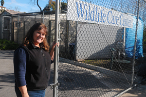 Executive Director Julia Parker gives a tour of the Santa Barbara Wildlife Care Network's facility on North Fairview Avenue in Goleta. (Lara Cooper / Noozhawk photo)