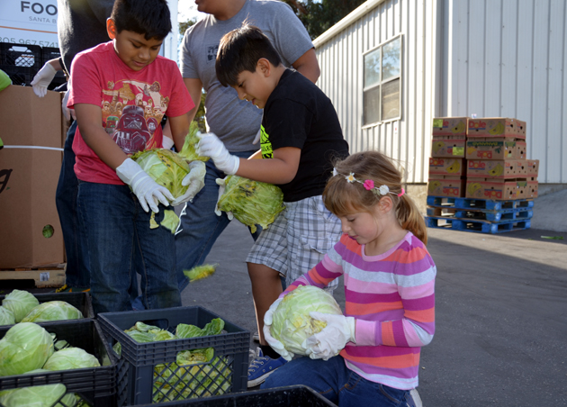 <p>From left, RJ, Andrew and Harper take part in sorting fresh produce for distribution at the Foodbank's Santa Barbara warehouse. This is just one of the many activities children and families can take part in through the Family Philanthropy Program.</p>
