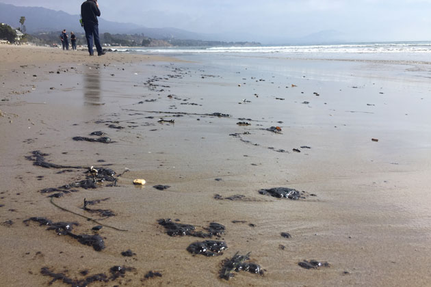 Investigators were trying to determine the source of oil globs that washed up Wednesday on Montecito beaches.