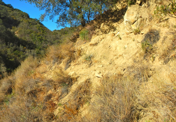 Parts of the steep sections between Cottam and Forbush Flat have eroded away.