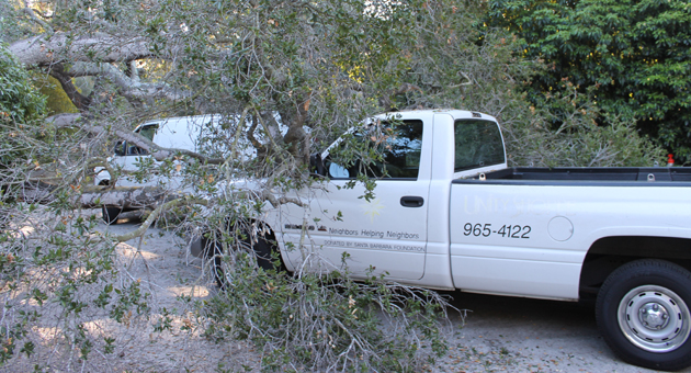 <p>Two vans and a truck belonging to the Unity Shoppe were parked at a storage location Sunday night when a tree fell on top of them, causing major damage to the vehicles.</p>
