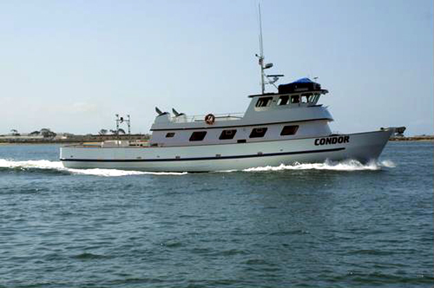"The Condor, the original tour vessel built in 1979 by Capt. Fred Benko, will resume the Condor Express whale-watching tour schedule on Sunday. Benko sold the Condor in 2002 to Scott ""Captain Tuna"" Miesel, who has been using the vessel as a fishing boat. (Condor Express photo)"