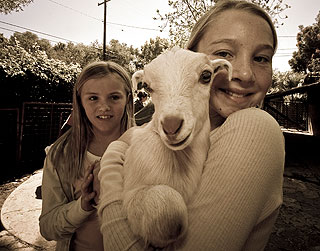 Chickens may have been the draw but goats were worth a hug, too, as 10-year-olds Katie Ward, right, and Megan Heollander, would attest.