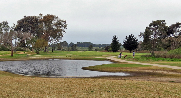 <p>The sale of Ocean Meadows Golf Club in Goleta to the Trust for Public Land was completed this week, clearing the way for restoration of what was once a working wetland ecosystem.</p>