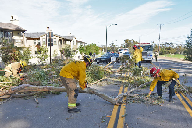 Santa Barbara County firefighters cut up a eucalyptus tree that crashed onto the western end of Hollister Avenue in Goleta Monday during blustery conditions.