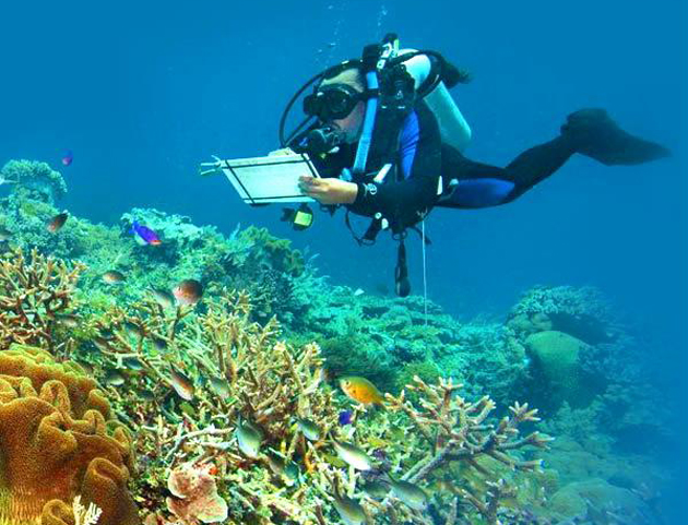 <p>Andreas Muljadi of The Nature Conservancy monitors coral reefs in ocean waters off Kofiau island, part of the Raja Ampat Islands of Indonesia.</p>