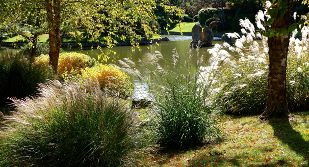 <p>The Missouri Botanical Garden&#8217;s 14-acre Japanese Garden is the largest traditional Japanese garden outside Japan.</p>