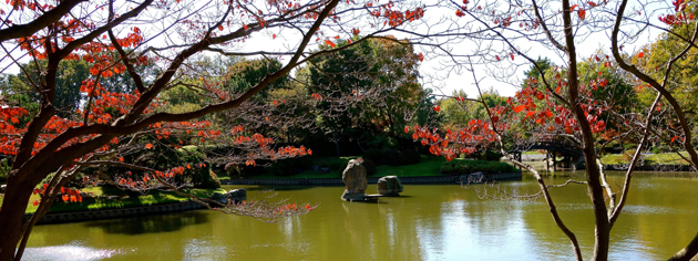 The 14-acre Japanese Garden at the Missouri Botanical Garden in St. Louis is the largest traditional Japanese garden outside Japan.