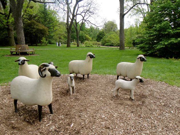 Sheep statuary.