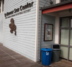 A recycling bin is displayed prominently at the entrance to the Ty Warner Sea Center.