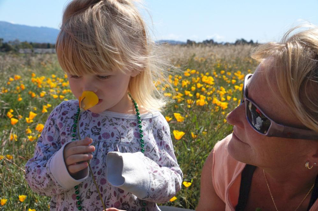 <p>One of Nature Saturday&#8217;s youngest attendees examines a native California poppy.</p>