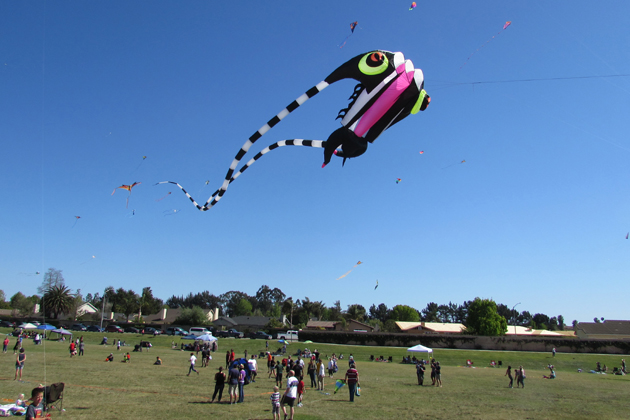 Kites of all shapes, sizes and colors fly above Rotary Centennial Park in Santa Maria on Sunday during the seventh annual Free Family Kite Festival organized by the Santa Maria Valley Discovery Museum.
