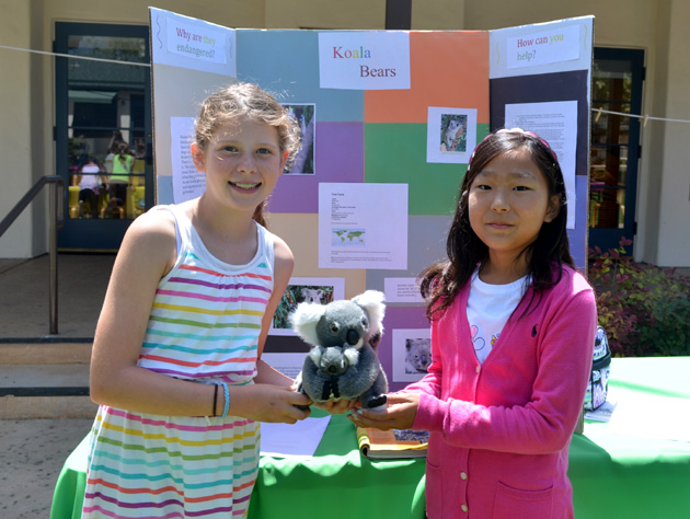 <p>Crane Country Day School fourth-graders Jaeda and Aria study the Australian koala bear and share the fun fact that this animal sleeps 18 to 22 hours per day.</p>