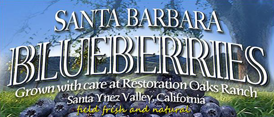 <p>Santa Barbara Blueberries is open from 10 a.m. to 6 p.m. every day until the end of the season.</p>