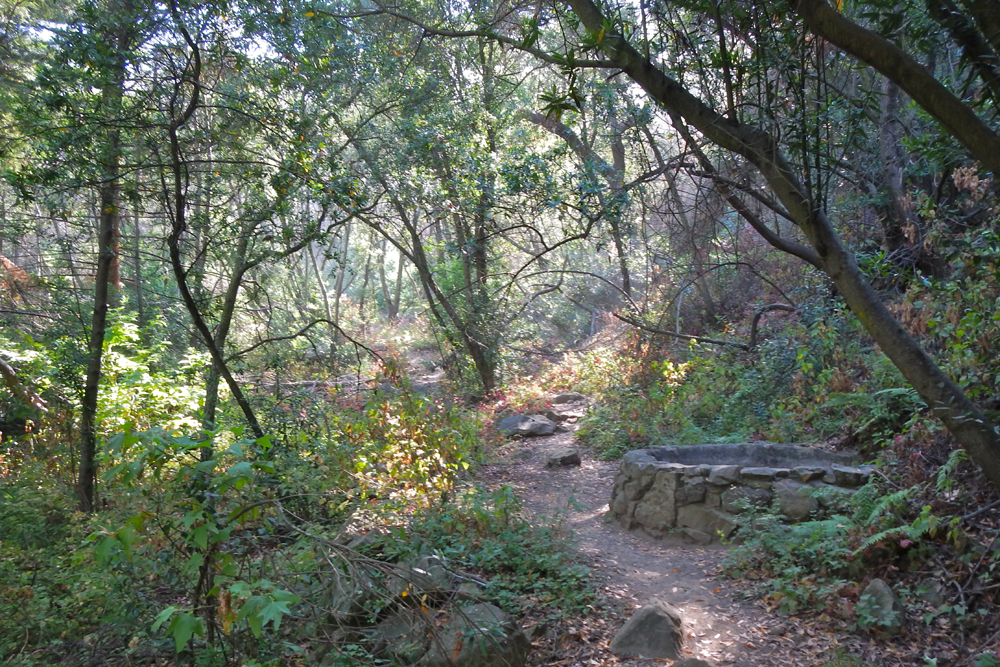 Rattlesnake Canyon is one of many local hiking areas that allow for ample exercise at zero cost.