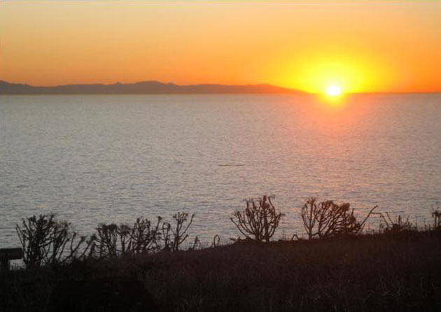 <p>Sunrise on Santa Barbara Island, looking toward the mainland. The only breeding colonies of California brown pelicans in the western United States are here and on West Anacapa Island.</p>