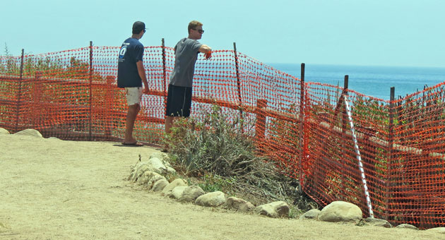 <p>Orange plastic mesh barriers are going up at parks along the Isla Vista bluffs in an attempt to reduce falls that have injured and killed people.</p>