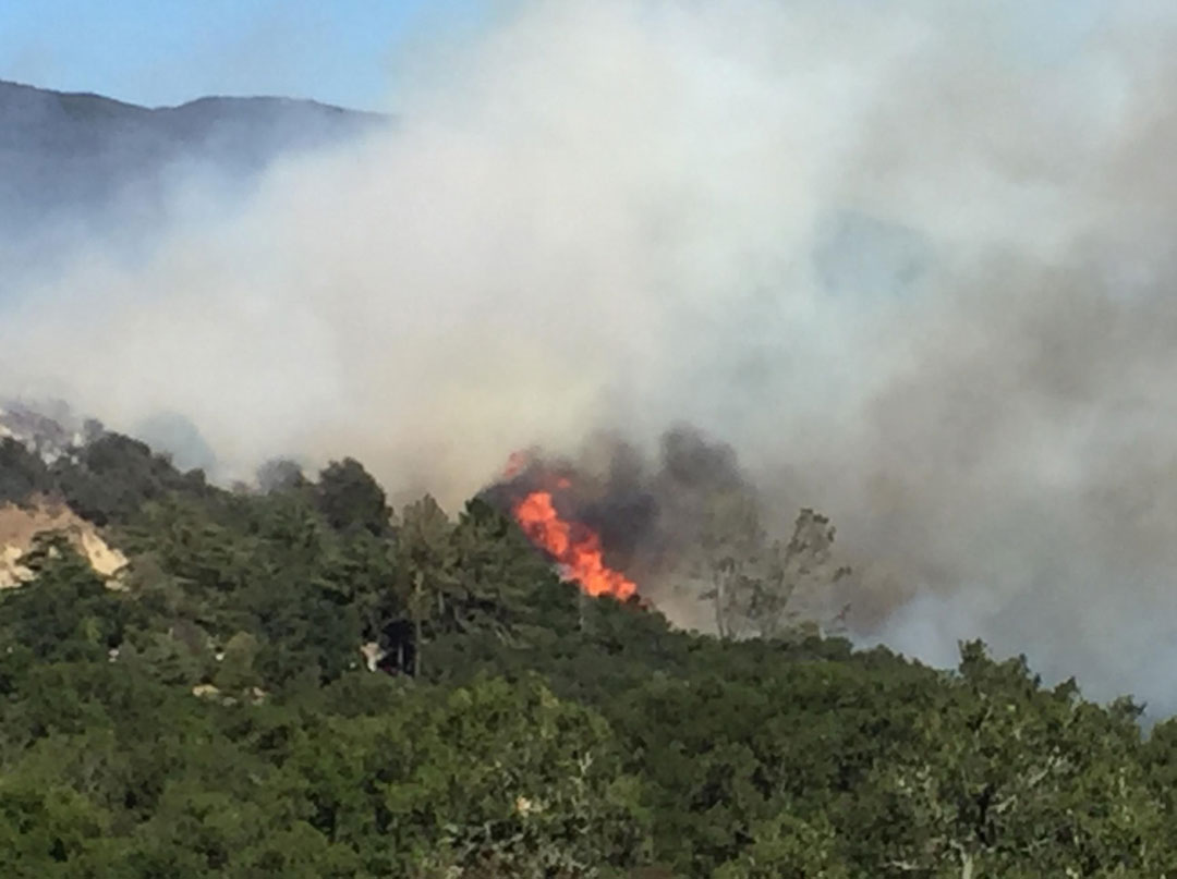 The U.S. Forest Service, Santa Barbara County Fire Department and other agencies worked together to fight a vegetation fire near Gaviota Wednesday.
