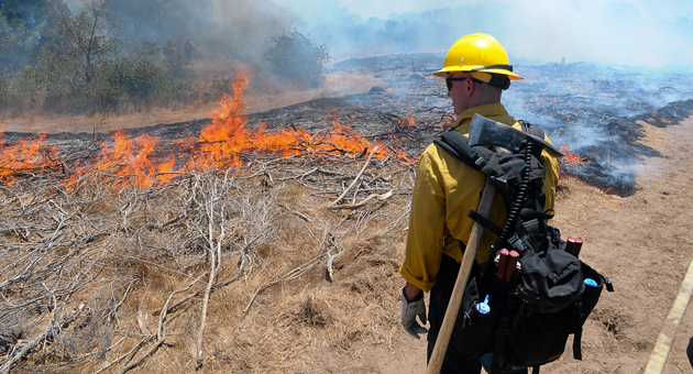 <p>A Santa Barbara County firefighter watches over a controlled burn Monday at the UCSB Lagoon Island.</p>