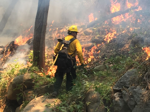 Firefighters set back fires to burn vegetation before the Sherpa Fire arrives to the area.