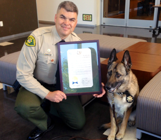 <p>Retiring sheriff&#8217;s K-9 Betti, with handler Deputy Mike McNeil, received a Resolution of Commendation on Tuesday from the Santa Barbara County Board of Supervisors recognizing Betti for her performance and service.</p>
