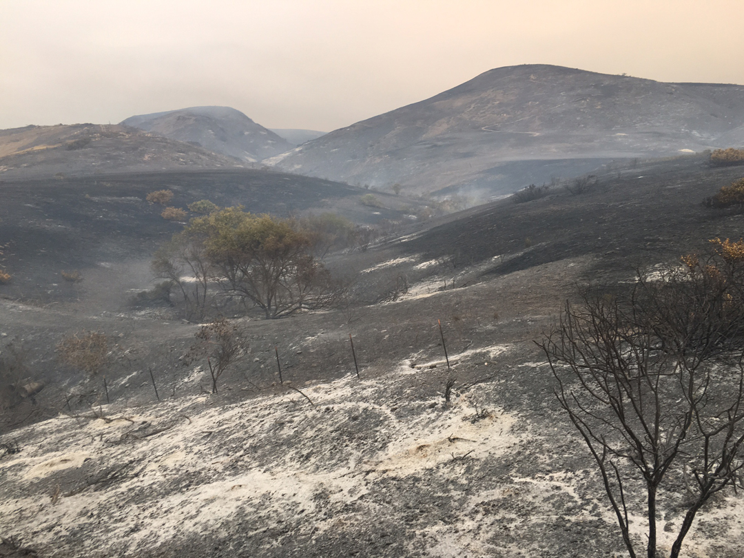The Sherpa Fire had burned 4,000 acres as of Friday morning.