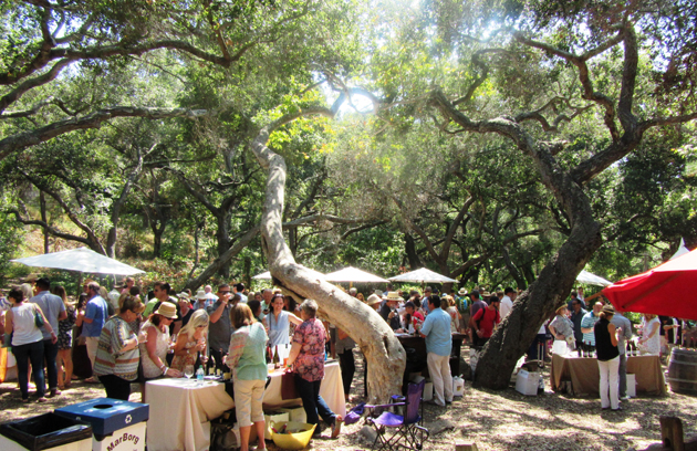 Hundreds of guests enjoy food and wine under the tree canopy at the Santa Barbara Museum of Natural History.