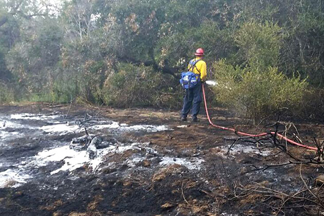 Firefighters were able to quickly douse a small vegetation fire that broke out Wednesday afternoon along the Maria Ygnacio bike path in Goleta.