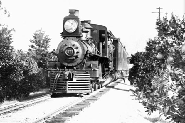 The Ellwood Express, which ran up the coast to Goleta in the late 1800s, gave rise to the name of Ellwood Station Road.