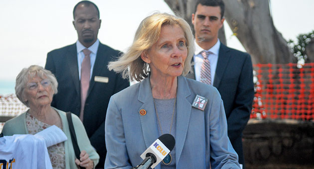 <p>Rep. Lois Capps, D-Santa Barbara, was joined by other local lawmakers Monday at a press conference in Isla Vista where they outlined their efforts to prevent a repeat of Elliot Rodger&#8217;s murderous rampage in May.</p>