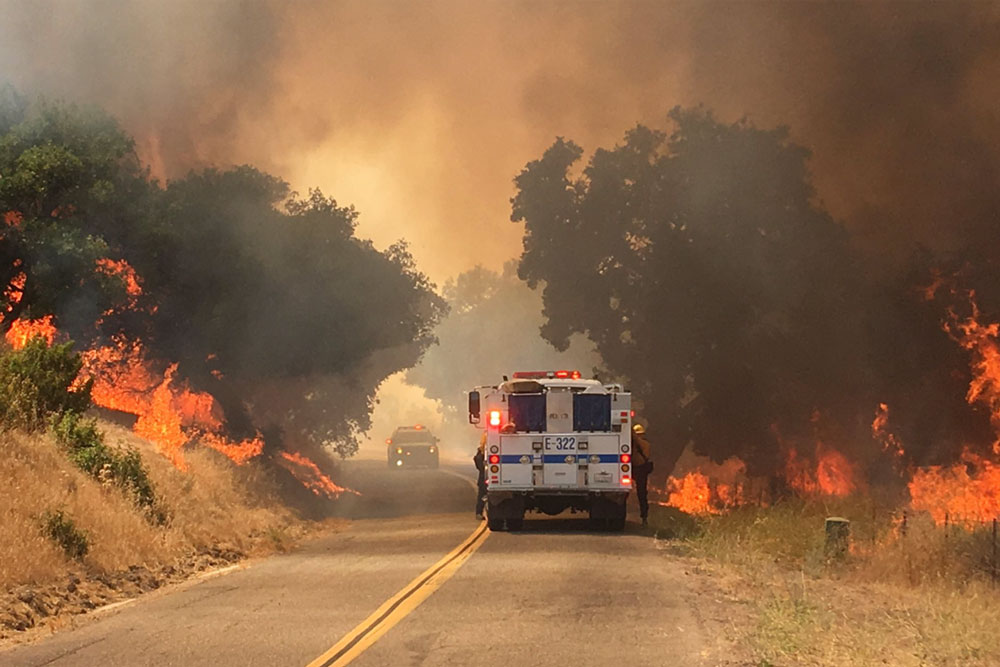 A vegetation fire burned along Foxen Canyon Road in the Santa Ynez Valley Monday afternoon.