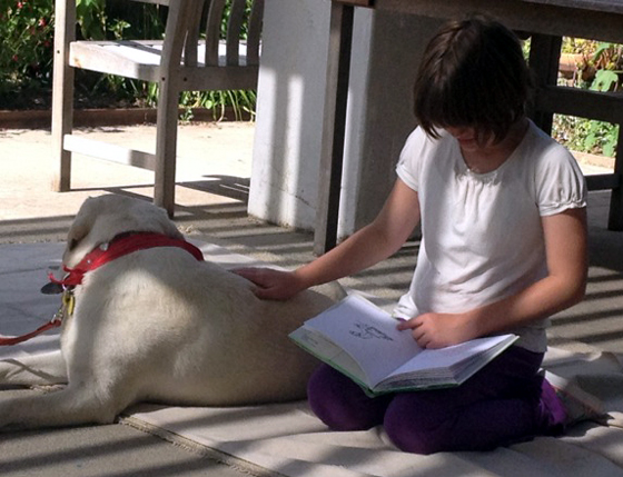 <p>Ivy Allin reads to therapy dog Haley as part of the Solvang Library's new Tail Waggin Tutors program.</p>