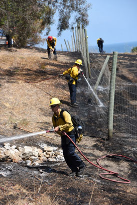 Firefighters douse the flames from a vegetation fired that charred about an acre Friday afternoon near the Tajiguas Landfill along the Gaviota Coast