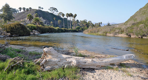 Arroyo Burro Creek, which empties into the ocean at Arroyo Burro Beach, is considered the most polluted waterway in the Santa Barbara area. (Mike Eliason / Noozhawk photo)