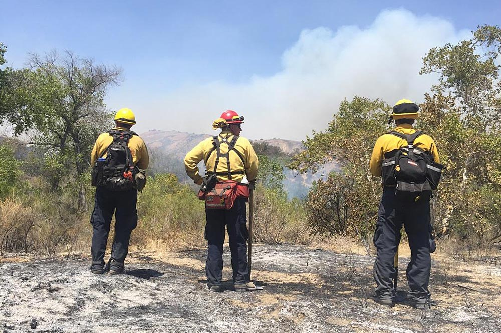 Firefighters on scene of the Rey Fire burning in Los Padres National Forest.