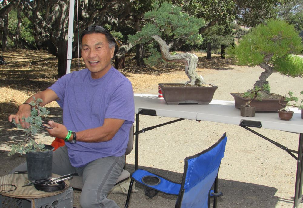 Steve Iwaki shapes bonsai during the two-day Santa Barbara County Local Fest at Ken Adam Park in Lompoc.