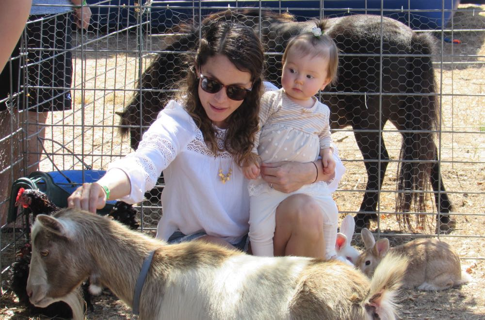 With her 11-month-old daughter, Alice, looking on warily, Kate Edstrom reaches for a goat at the Lompoc Valley 4-H petting zoo.